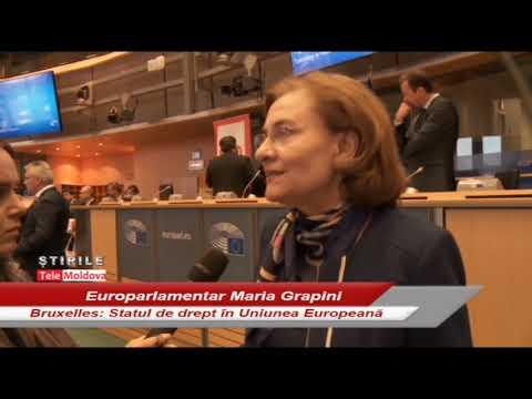 Maria Grapini – Inițiativă românească privind statul de drept